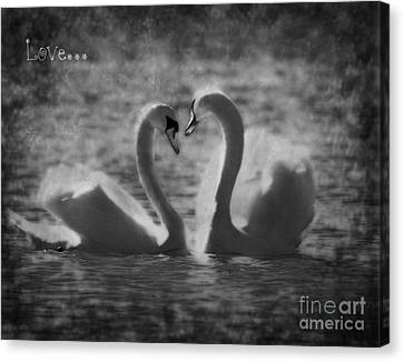 Love... Canvas Print by Nina Stavlund
