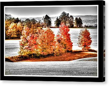 Canvas Print featuring the photograph Love Of Red by Michaela Preston