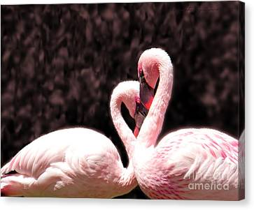 Canvas Print featuring the photograph Love Of The Flamingos by Gena Weiser