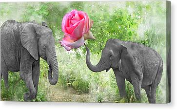 Love-rose Canvas Print by Manfred Lutzius
