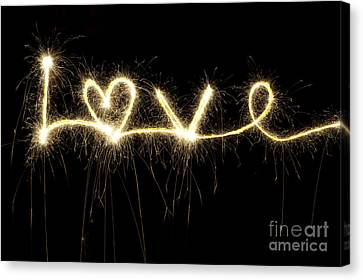 Love Shines Brightly Canvas Print by Tim Gainey