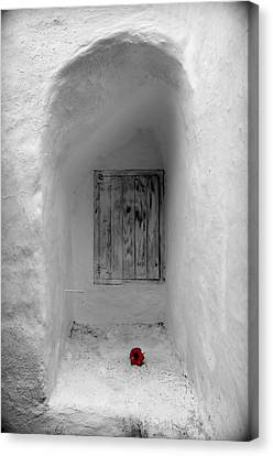 Remembering The Tragedy Of Romeo And Juliet This Closed Windows Receives A  Flower As Love Gift Canvas Print by Pedro Cardona