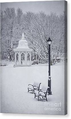 Love Through The Winter Canvas Print