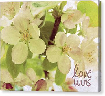 Love Wins Canvas Print by Lisa Barbero