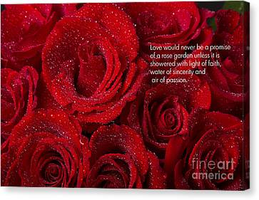 Love Would Never Be A Promise Of A Rose Garden Canvas Print by James BO  Insogna