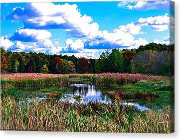 Lovely Day Canvas Print by Michelle and John Ressler
