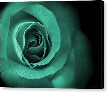 Love's Eternal Teal Green Rose Canvas Print by Jennie Marie Schell