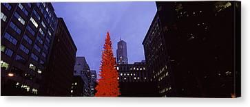 Low Angle View Of A Christmas Tree, San Canvas Print