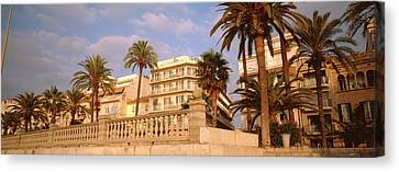 Low Angle View Of Palm Trees, Sitges Canvas Print by Panoramic Images