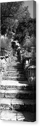 Low Angle View Of Steps In A Garden Canvas Print by Panoramic Images