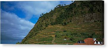 Low Angle View Of Terraced Fields Canvas Print by Panoramic Images