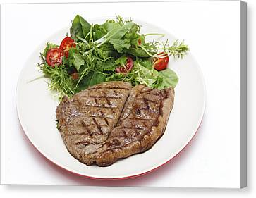Low Carb Steak And Salad Canvas Print by Paul Cowan