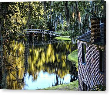 Canvas Print featuring the photograph Low Country Impressions by Jim Hill