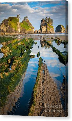 Low Tide At Point Of The Arches Canvas Print by Inge Johnsson