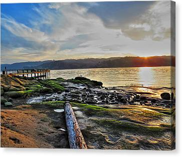 Low Tide Canvas Print by Brian Maloney