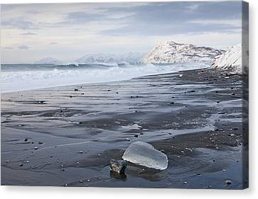 Low Tide In The Winter Canvas Print