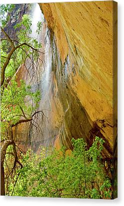 Lower Emerald Pool Waterfall Red Rock Canvas Print by Howie Garber
