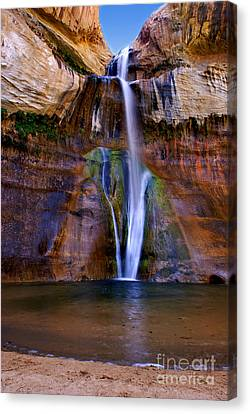 Alga Canvas Print - Lower Falls Of Calf Creek by Carolyn Rauh