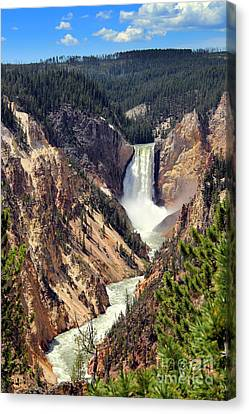 Canvas Print featuring the photograph Lower Falls Of Yellowstone by Jemmy Archer