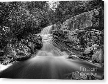 Lower Falls On Big Run River  Canvas Print by Dan Friend