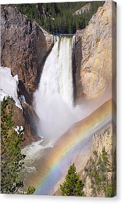 Canvas Print featuring the photograph Lower Falls With Rainbow - Yellowstone National Park by Aaron Spong