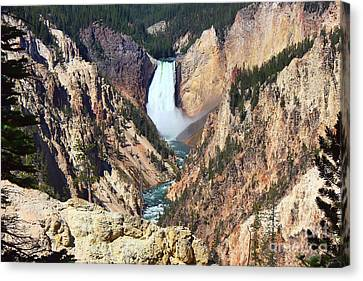 Canvas Print featuring the photograph Lower Falls Yellowstone by Teresa Zieba
