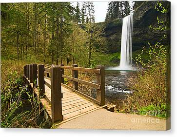Green Lichen Canvas Print - Lower South Waterfall With Footbridge In Oregon Columbia River Gorge. by Jamie Pham