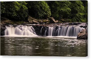 Lower Swallow Falls 1 Canvas Print by Chris Flees