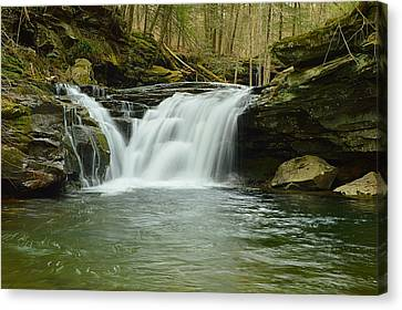 Lower Twin Falls #1 Canvas Print