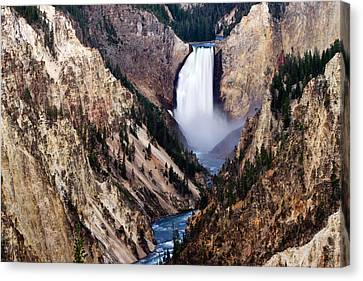 Lower Yellowstone Falls Canvas Print by Bill Gallagher