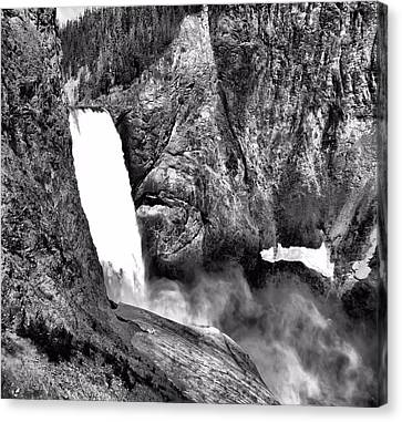 Lower Yellowstone Falls Black And White Canvas Print by Dan Sproul