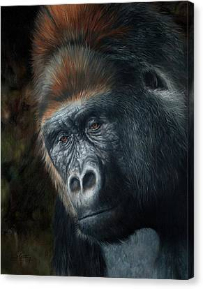 Lowland Gorilla Painting Canvas Print by David Stribbling