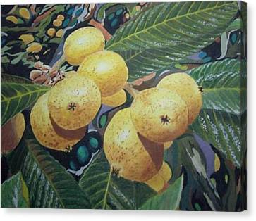 Lowquats 2 Canvas Print by Hilda and Jose Garrancho