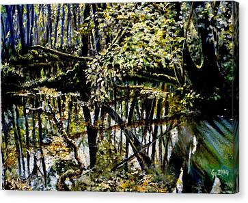 Lubianka-4 Mystery Of Swamp Forest Canvas Print