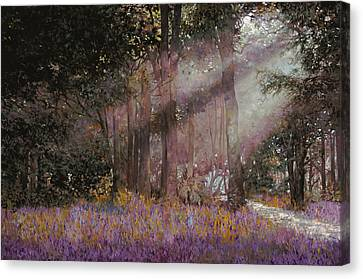 Luci Canvas Print by Guido Borelli
