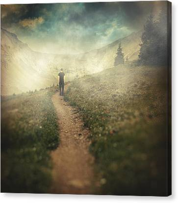 Lucid Dream Canvas Print by Taylan Apukovska
