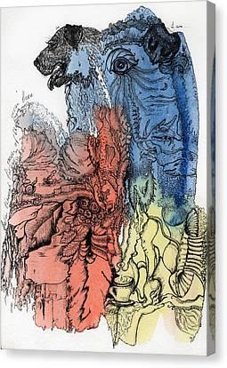 Lucid Mind - 6 Canvas Print