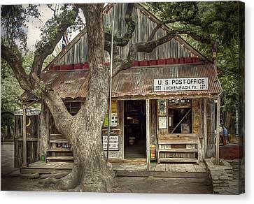 Live Oaks Canvas Print - Luckenbach 2 by Scott Norris