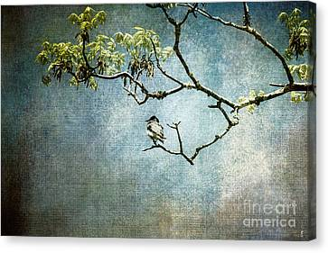 Lucky Bird Canvas Print