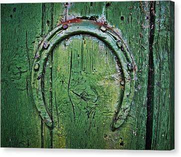 Canvas Print - Lucky Horseshoe by Roland Byrne