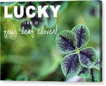 Lucky Like A Clover Canvas Print by Nancy Ingersoll