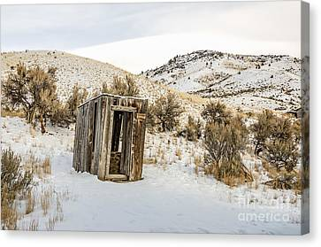Lucky Outhouse Canvas Print by Sue Smith