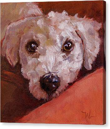 Lucky Canvas Print by Pattie Wall
