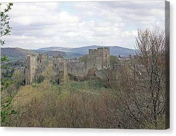 Ludlow Castle Canvas Print by Tony Murtagh