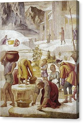 The Sacred Feminine Canvas Print - Luini, Bernardino 1480-1532. The by Everett