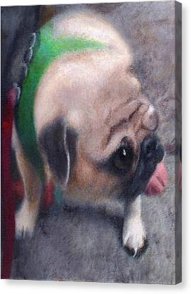 Luka Of 25th Street Canvas Print by Robert Conway
