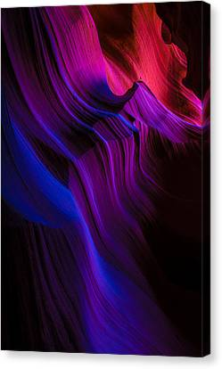 Luminary Peace Canvas Print by Chad Dutson
