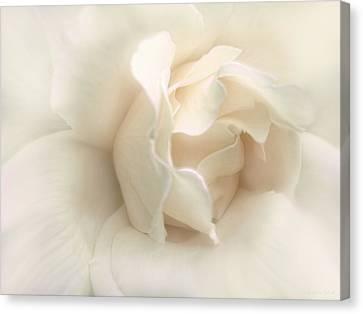 Luminous Ivory Rose Flower Canvas Print
