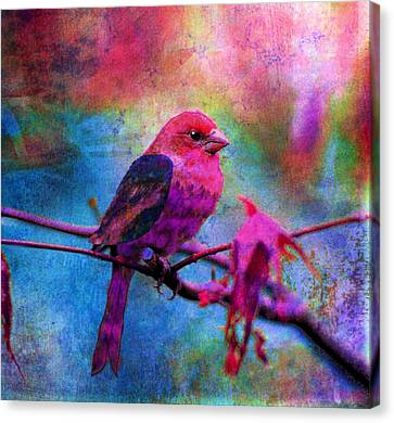 Luminous Canvas Print by Robin Mead