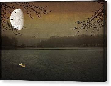Lunar Lake Canvas Print by Tom York Images